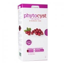 Phytocyst Arándano Rojo 250 ml Drasanvi