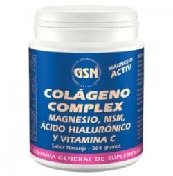 Colágeno Complex 364 g GSN